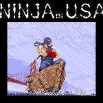 ninja-gaiden-arcade2