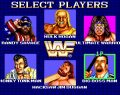 WWF Superstars – Arcade
